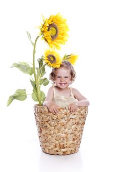 Free Baby Girl In Sunflowers Stock Photo - 14761570