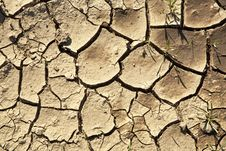 Free Cracked Earth Background Stock Images - 14762424
