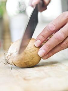 Free Cutting Onion Stock Image - 14762681