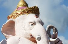 Free The Elephant Head Royalty Free Stock Images - 14764549