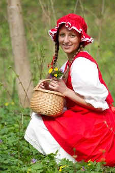 Free Red Riding Hood In The Wood Royalty Free Stock Images - 14765519