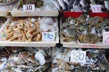 Free Sea Food Stock Photos - 14766113