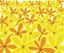 Free Yellow Floral Background Stock Image - 14768071