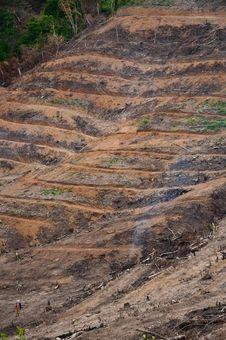 Free Farming In Mountain. Royalty Free Stock Photos - 14768978