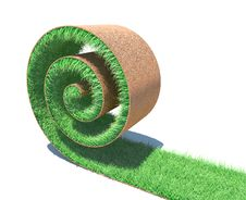 Roll Of A Fresh Green Grass Stock Images