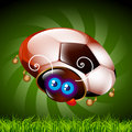 Free Ladybug Fan Of Football Stock Images - 14779744