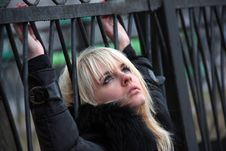 Girl At The Fence Stock Photo