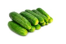 Free Green Cucumber Stock Photography - 14773572