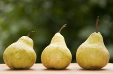 Free Pears Stock Photos - 14774693