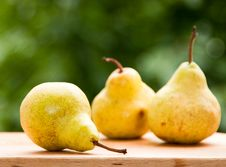 Free Pears Stock Photography - 14774702