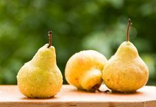 Free Pears Royalty Free Stock Image - 14774706