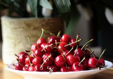 Free Cherry In Plate Royalty Free Stock Photography - 14775707
