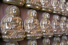 Free Buddha Royalty Free Stock Image - 14778276