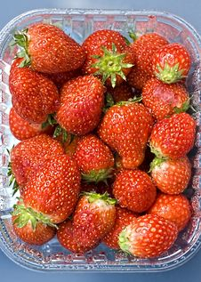 Free Strawberries Stock Photography - 14778652