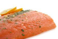 Free Salmon Stock Photo - 14779070