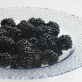 Free Blackberries Stock Photography - 14780312