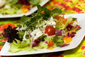 Free Fresh,big Italian Summer Salad Royalty Free Stock Image - 14787656