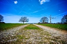 Track In Summery Countryside Stock Images