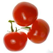 Free Three Tomatoes Stock Image - 14781841