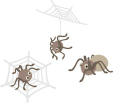 Free Cute  Spiders Stock Image - 14781881