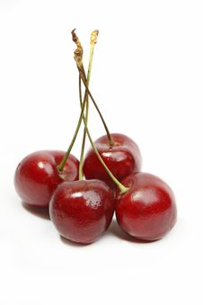 Free Sweet Cherry Royalty Free Stock Photo - 14781955