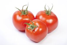 Free Three Red Tomatoes Royalty Free Stock Photos - 14783588