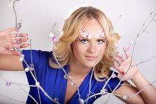 Free Fairy Stock Photography - 14786492