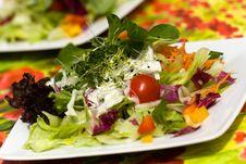 Free Fresh,big Italian Summer Salad Royalty Free Stock Image - 14787656