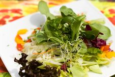 Fresh,big Italian Summer Salad Royalty Free Stock Photography