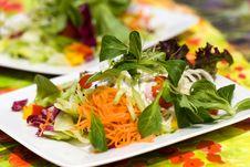 Free Fresh,big Italian Summer Salad Royalty Free Stock Photos - 14787678