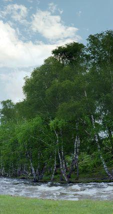 Free Landscape Royalty Free Stock Image - 14788936