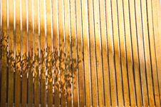 Free Wooden Wall Stock Image - 14789041