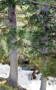 Free Landscape Royalty Free Stock Image - 14789186