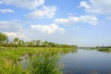 Free Everglade Park Stock Photography - 14789582