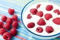 Free Yogurt Dessert With Raspberries Stock Photography - 14790082