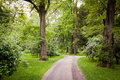 Free Paths In The Park Stock Photos - 14790173