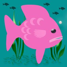 Free Pink Fish Royalty Free Stock Images - 14790929