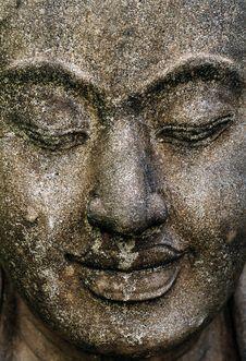 Free Buddha Royalty Free Stock Photos - 14792018