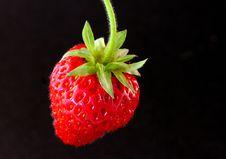 Free Strawberry Royalty Free Stock Photo - 14792155