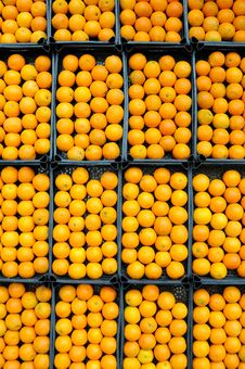 Free Fresh Oranges Ready To Sale Stock Image - 14795981