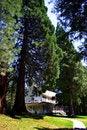 Free Historic Wawona Hotel, Yosemite National Park Stock Photos - 1486493
