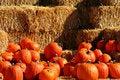 Free Pumpkin Pile 4 Royalty Free Stock Photos - 1487288