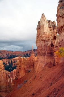 Free View In Amphitheater - Bryce Canyon Stock Images - 1481184