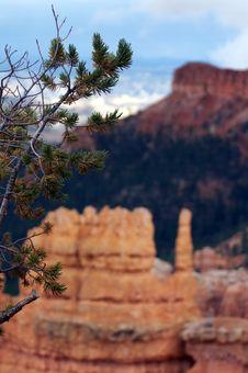 Free Amphitheater - Bryce Canyon Stock Photos - 1482073