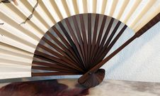 Free Decorative Fan Royalty Free Stock Photo - 1483165