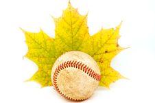 Free Baseball Ball Stock Photo - 1486250