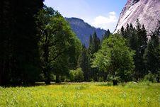 Free Yosemite National Park, USA Stock Image - 1486481