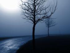 Free Fog Royalty Free Stock Photos - 14800528