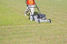 Free Lawn Care Royalty Free Stock Images - 14800629