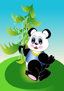 Free Panda Stock Images - 14801734
